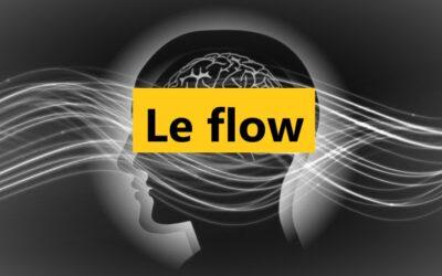 Le flow : à la recherche de l'expérience optimale